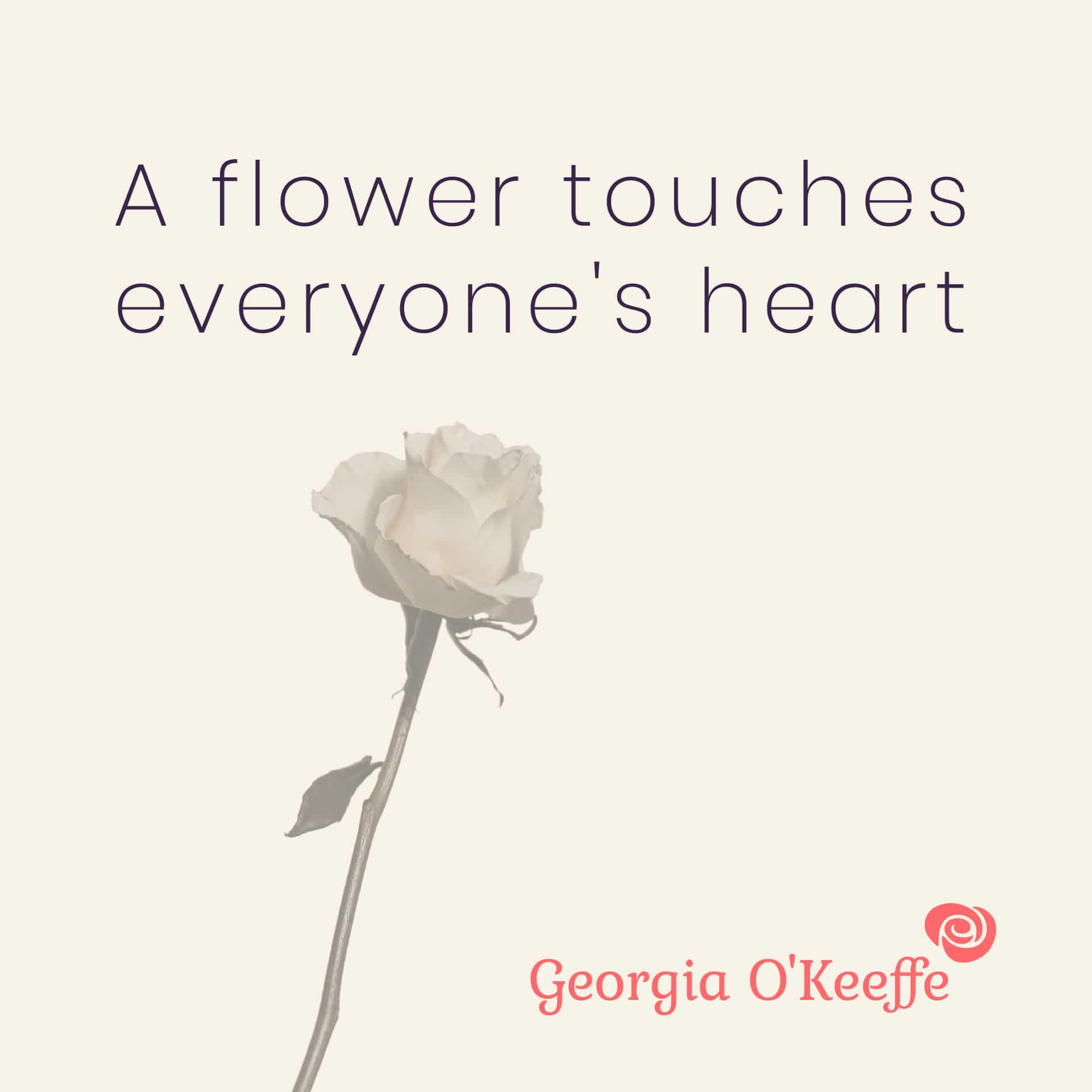 A flower touches everyone's heart